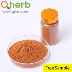 100% naturel 98 % de thé de qualité alimentaire polyphénols L'EGCG UV Extrait de thé vert Herbal plante avec échantillon gratuit