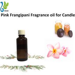 De roze Olie van de Geur Frangipani die hoog voor Kaars wordt geconcentreerd