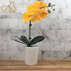 Personalizar el color blanco brillante Maceta de cerámica con precio razonable.
