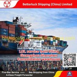 LCL service de China/Guangzhou y Shenzhen a Yokohama/mar de Japón Freight Forwarder