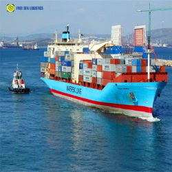 Haus-Hausverschiffen-Service-Fracht-Absender-Ozean-internationales Verschiffen-Kinetik von China zum Singapur-Service