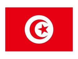 Service international de la logistique du fret aérien en provenance de Chine vers la Tunisie