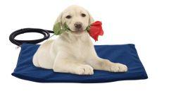 Alfombrilla de calentamiento de perro de mascota Almohadilla eléctrica