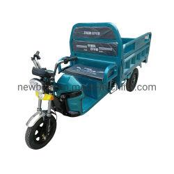 ركوب الدراجة الكهربائية تخفيضات ساخنة على الدراجة النارية نموذج جديد Bajaj السيارات Rickshaw بسعر أقل