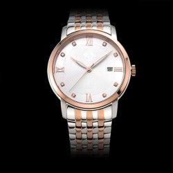 ギフトのステンレス鋼の腕時計のサファイアのガラススイスの自動機械動きの腕時計(JY-ST012)