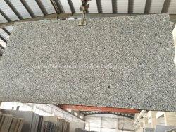 Chinesischer preiswerter Schwan-grauer Schwan-blauer Granit für Countertop-/küche-Oberseite-Eitelkeits-Oberseiten/Badezimmer-Oberseiten/Hotel-Projekt