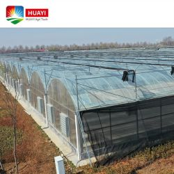 Agricultura inteligente/Comercial Tunnle Multi-Span película de plástico de invernadero con sistema hidropónico para plantar hortalizas