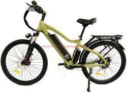 Fábrica de China Electric Bicicleta de Montaña Motor sin escobillas de Super off road Ebike eléctrico