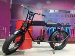 500W/750W Motor Fat Tire Mountain Groothandel Elektrische fiets eBike
