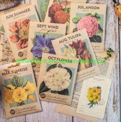 Manuale fai da te della serie di Garden Girl adesivi decoranti Scrapbook