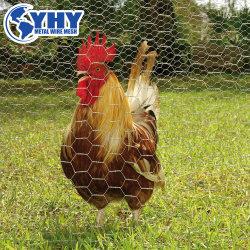 سياج الدجاج المغلفن Hex Netting Wire Fence