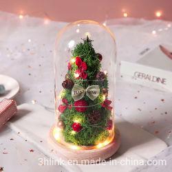 Weihnachtsblumen, Die Ihren Urlaub Mehr Festlich Als Machen Ever Christmas Blumenarrangements - Winterurlaub Blumen Arrangieren Ideen