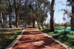 Красочные Non-Slip клей для узкой дороги замедление районов зеленой дороги тротуары