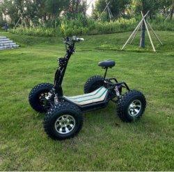 4*4 طي الدراجة الكهربائية على الطرق الوعرة دراجة ATV&Quad مع CE