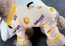 ملابس الكلاب الحيوانات الأليفة شتاء دافئ أربع أقدام عوامة تيدي VIP من دب صغيرة جرو قطة شعر في الربيع و الزي الخريف الحيوانات الأليفة