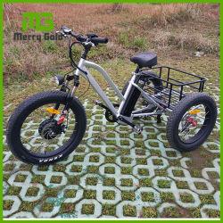 Guidon de vélo pneu Controls-Switches-gras 3 roue de vélo électrique/électrique Trike de fret
