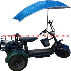 3 عجلة شحن درّاجة ناريّة كهربائيّة شحن درّاجة ثلاثية مع مظلة