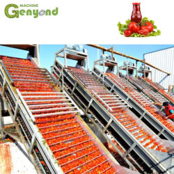 良質の商業新しい唐辛子のトマトのりの日付
