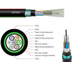 24/48/96/144 singola di muffa di memoria ha incagliato la fibra che corazzata del tubo del rivestimento allentato di Duble /Optic ottico esterno dirige il cavo sepolto del tubo (GYTY53)