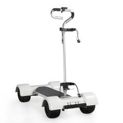 Поле для гольфа Ecorider скутер 1000W 60V взрослых электрического поля для гольфа роликовой доске