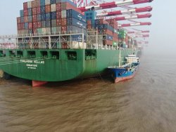 Лучшие расценки доставки морские грузовые перевозки логистика Шэньчжэне в Александрии/Гвадалахара