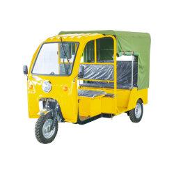 Triciclo de Pasajeros Tipo de motor eléctrico con 8 pueblos