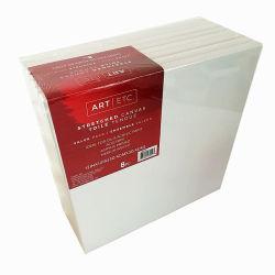 Пустые художником из рамы полотенного транспортера на покраску Canvas