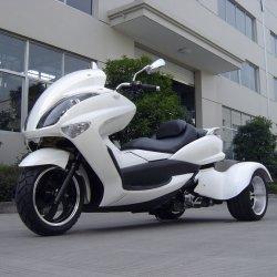 3 عجلة [أتف/تف] درّاجة ثلاثية/[أتف] [شنس] [200كّ/250كّ]