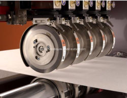 Spunlace biodegradáveis Nonwoven Fabric mistura de algodão e viscose