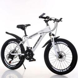 Fornitore della Cina di bici della bicicletta della strada del acciaio al carbonio della bici di montagna