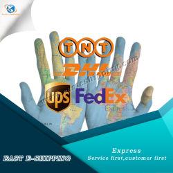 Надежные DHL и UPS/TNT/FedEx Express служба доставки из Китая в Европу