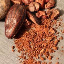 Chine fournisseur Prix de gros naturel Pure poudre de cacao en vrac