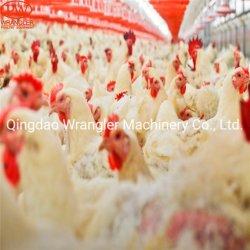 Pan de poulets de chair de volaille automatique complète de l'équipement d'alimentation