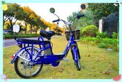 미러와 원격 제어 모형 No. Bfz-F8b를 가진 전기 자전거 자전거