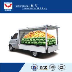 De plantaardige Vrachtwagen van de Mobiele Opslag van de Vrachtwagen van de Verkoop van de Bloemen van de Voertuigen van de Verkoop