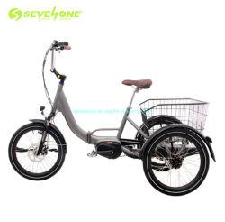 Triciclo Elettrico Usato Per Il Telaio Pieghevole In Alluminio Cargo