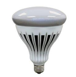 大出力と高ルーメンの LED 電球ライト
