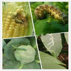 Les pesticides d'abamectine 1,8 % de ce liquide pour la vente
