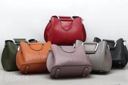 2018 Novo Modelo Fashion bolsas de couro (F10878)