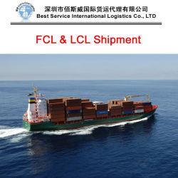 De Dienst van de logistiek, Internationale Overzeese Vracht die, Oceaan wereldwijd verscheept aan (FCL Container 250 '' 40 '')