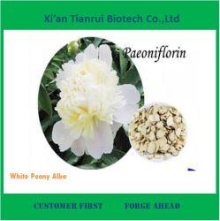 El mejor precio blanco Planta Alba Peony Extraer en Venta