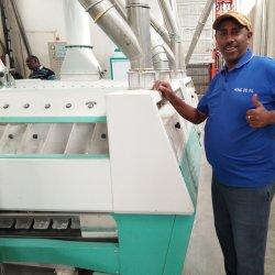 A farinha de trigo duro Mill fresadora fábrica de equipamentos de tomada de processamento de preços