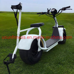 ゴルフコースのゴルフ電気スクーター都市ココヤシの三輪車のオートバイのバイクのスクーターのゴルフカート