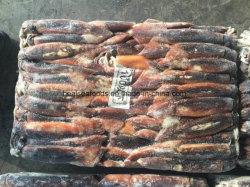 Китайский замороженный кальмар цена размер 100-200g