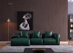 Luz de moda de luxo sofá com todos os materiais