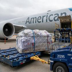 중국 - 중국 - 일본 화물 운송 화물 운송 화물 FCL LCL 미국 온타리오 국제 공항