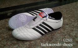 Taekwondo-Schuhe