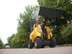 Minirad-Ladevorrichtung mit Wanne (HY200)