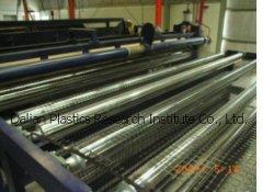 Biaxes géogrille Ligne de Production (FSD-TGGS)