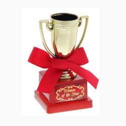 Metacrilato personalizados de alta calidad de resina de Promoción Deportiva de Golf de la Copa Trofeo de Oro de Honor Premios trofeos Trofeo acrílico de alta calidad (089)